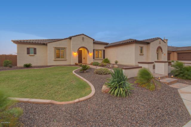 31854 N 61ST Place, Cave Creek, AZ 85331 (MLS #5871505) :: The Laughton Team
