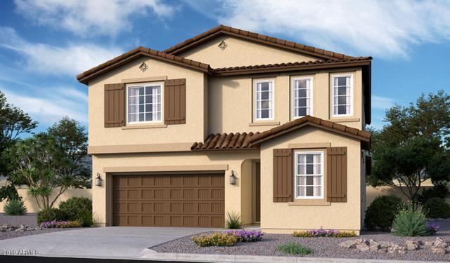20924 E Kingbird Drive, Queen Creek, AZ 85142 (MLS #5871585) :: The Kenny Klaus Team