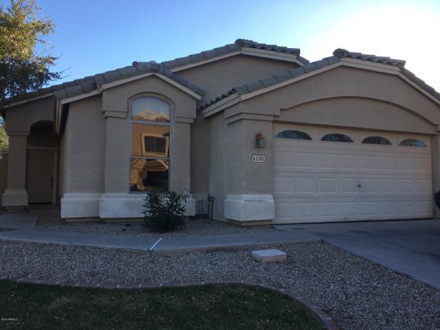 43785 W Cahill Drive, Maricopa, AZ 85138 (MLS #5871589) :: Yost Realty Group at RE/MAX Casa Grande