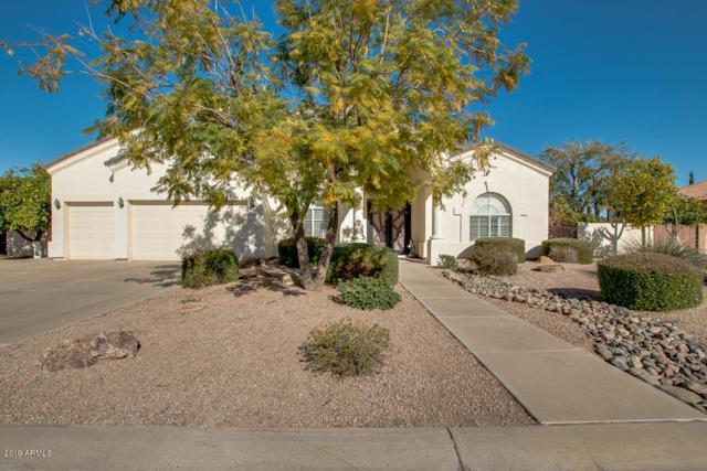 4468 E Encinas Avenue, Gilbert, AZ 85234 (MLS #5871608) :: The Property Partners at eXp Realty