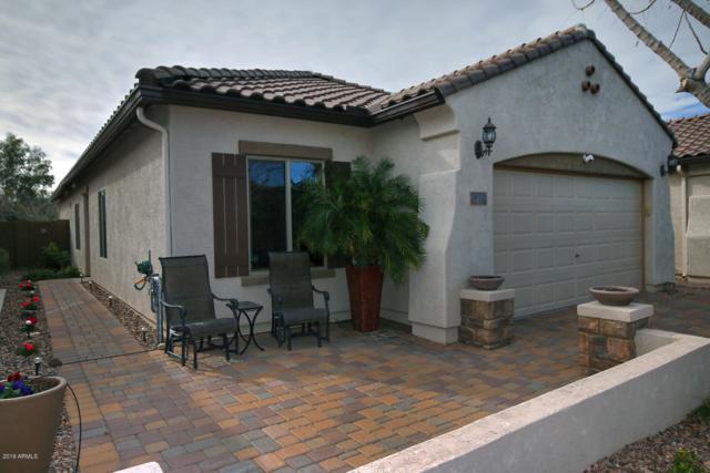 7313 W Sonoma Way, Florence, AZ 85132 (MLS #5871633) :: The Daniel Montez Real Estate Group