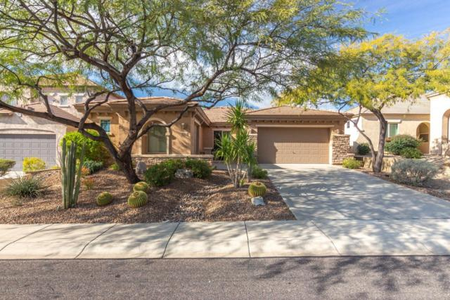42820 N Livingstone Way, Anthem, AZ 85086 (MLS #5871638) :: The Wehner Group