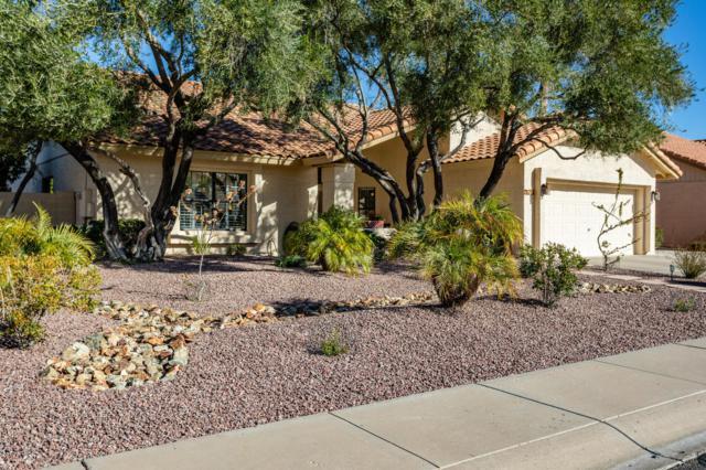 9792 E Dreyfus Avenue, Scottsdale, AZ 85260 (MLS #5871707) :: The W Group