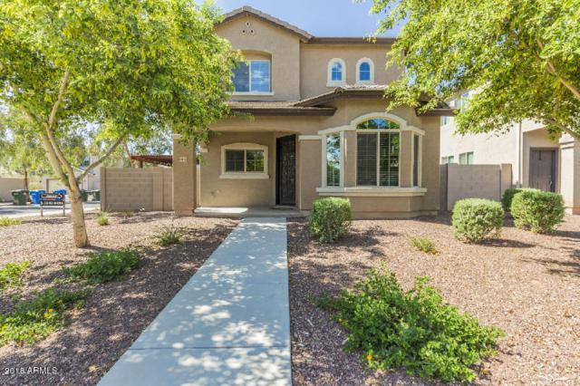 9324 S 33RD Drive, Laveen, AZ 85339 (MLS #5871726) :: Group 46:10