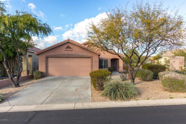 4536 E Matt Dillon Trail, Cave Creek, AZ 85331 (MLS #5871727) :: RE/MAX Excalibur