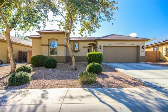 18161 W Purdue Avenue, Waddell, AZ 85355 (MLS #5871773) :: The Bill and Cindy Flowers Team
