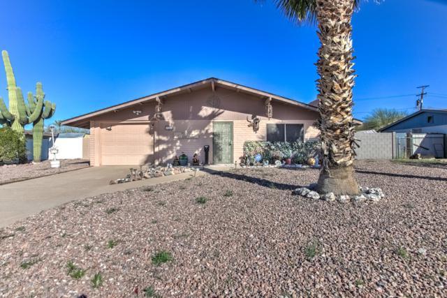 730 E Desert Avenue, Apache Junction, AZ 85119 (MLS #5871793) :: Arizona 1 Real Estate Team