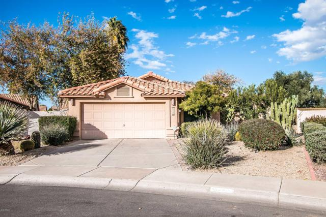 3390 W Golden Lane, Chandler, AZ 85226 (MLS #5871814) :: The Property Partners at eXp Realty