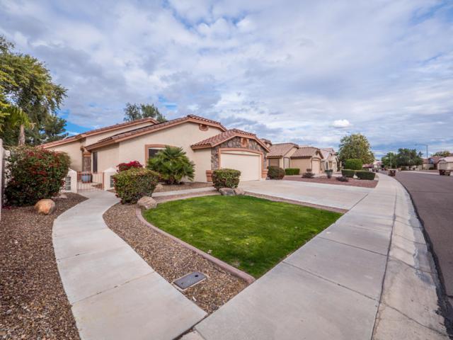 8854 W Salter Drive, Peoria, AZ 85382 (MLS #5871859) :: Occasio Realty