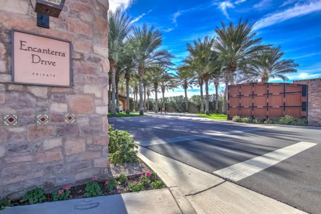 183 E Lemon Lane, San Tan Valley, AZ 85140 (MLS #5871885) :: Arizona 1 Real Estate Team