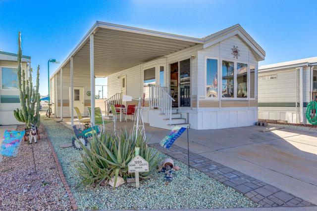 1205 W Klamath Avenue, Apache Junction, AZ 85119 (MLS #5871893) :: Yost Realty Group at RE/MAX Casa Grande