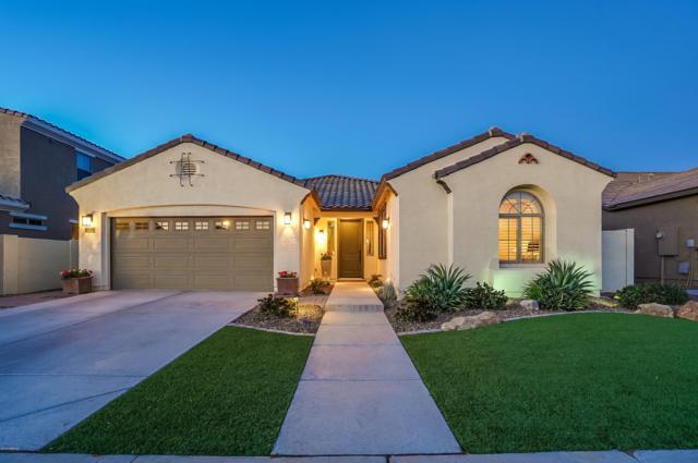 2842 E Virginia Street, Mesa, AZ 85213 (MLS #5871926) :: Arizona 1 Real Estate Team