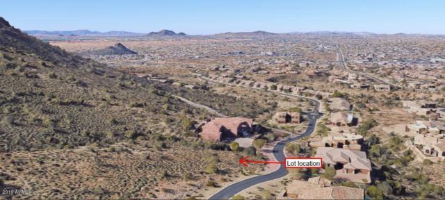 14317 E Desert Cove Avenue, Scottsdale, AZ 85259 (MLS #5871987) :: Brett Tanner Home Selling Team
