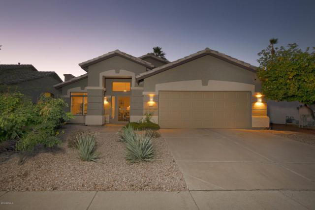 17040 N 43RD Place, Phoenix, AZ 85032 (MLS #5871989) :: The Wehner Group
