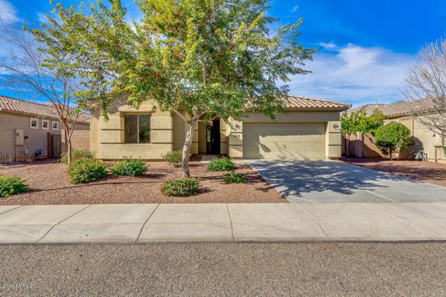 1930 N 114TH Drive, Avondale, AZ 85392 (MLS #5871993) :: RE/MAX Excalibur