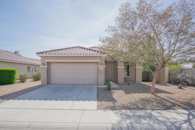 9725 W Florence Avenue, Tolleson, AZ 85353 (MLS #5871996) :: Group 46:10