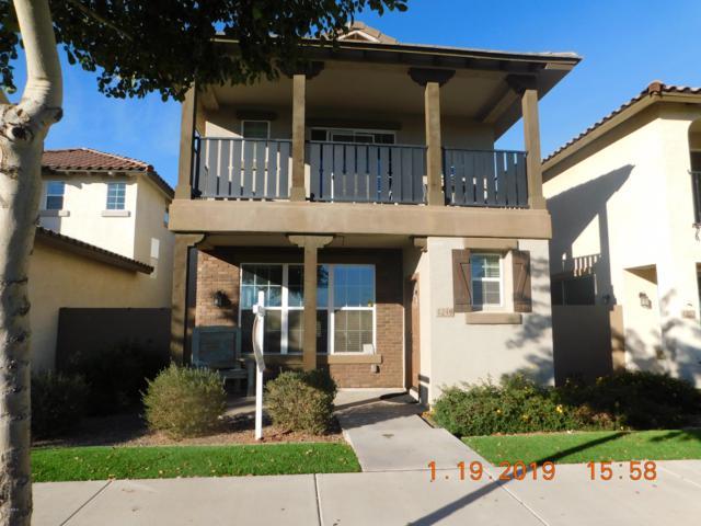 4249 E Pony Lane, Gilbert, AZ 85295 (MLS #5872001) :: Team Wilson Real Estate