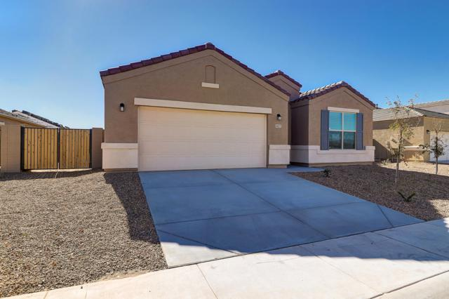 41023 W Crane Drive, Maricopa, AZ 85138 (MLS #5872003) :: Group 46:10