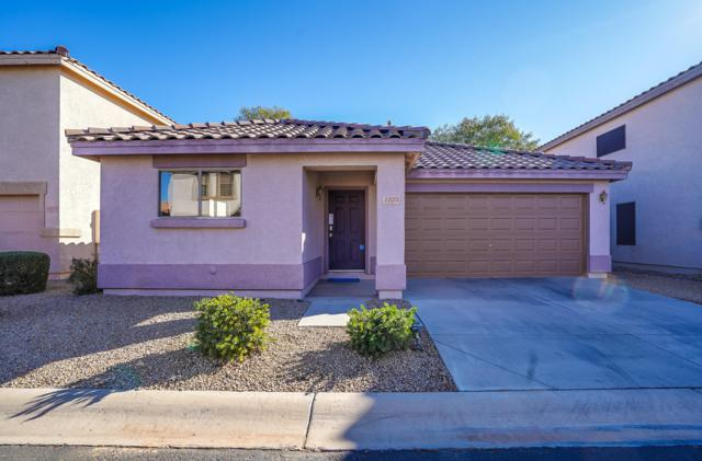1025 S Mosley Drive, Chandler, AZ 85286 (MLS #5872019) :: Arizona 1 Real Estate Team
