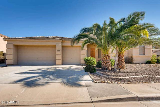 6581 S Salt Cedar Place, Chandler, AZ 85249 (MLS #5872081) :: Arizona 1 Real Estate Team