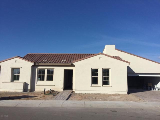 1682 E Everglade Lane, Gilbert, AZ 85298 (MLS #5872092) :: Team Wilson Real Estate