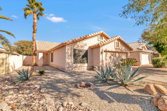 826 W Silver Creek Road, Gilbert, AZ 85233 (MLS #5872096) :: Team Wilson Real Estate
