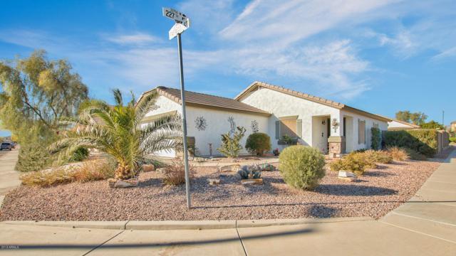 22738 W Papago Street, Buckeye, AZ 85326 (MLS #5872112) :: The W Group