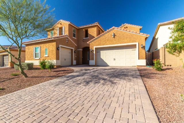10162 W White Feather Lane, Peoria, AZ 85383 (MLS #5872123) :: Riddle Realty