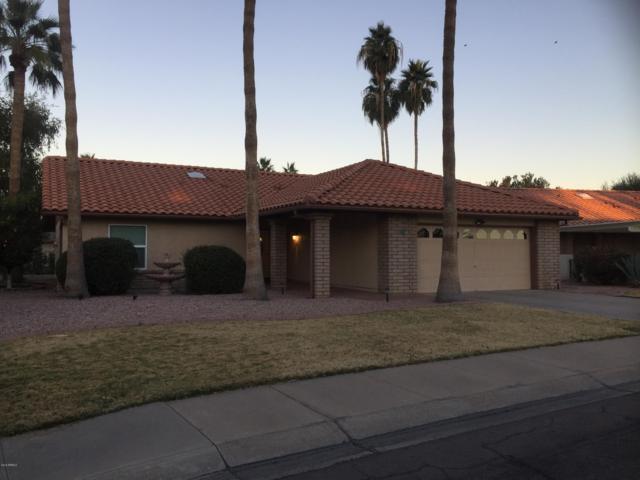 1274 Leisure World, Mesa, AZ 85206 (MLS #5872147) :: Team Wilson Real Estate