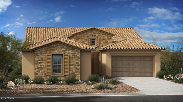 10229 E Tiger Lily Avenue, Mesa, AZ 85212 (MLS #5872149) :: Team Wilson Real Estate