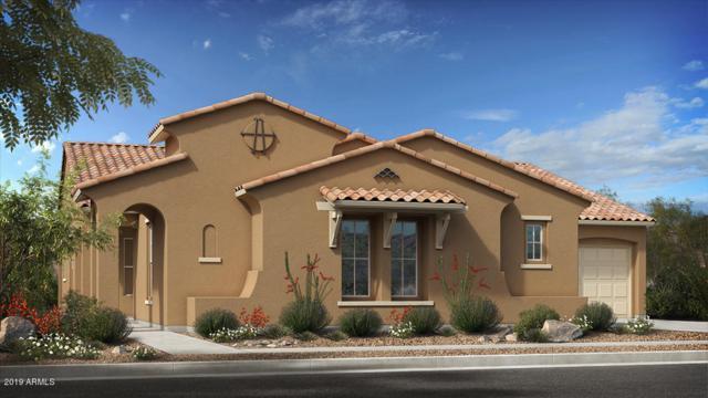 10455 E Thatcher Avenue, Mesa, AZ 85212 (MLS #5872179) :: Team Wilson Real Estate
