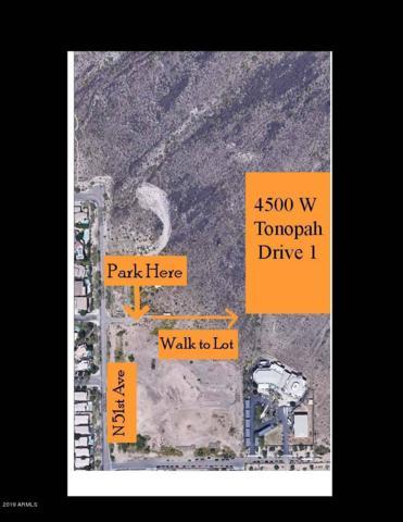 4500 W Tonopah Drive, Glendale, AZ 85308 (MLS #5872197) :: Riddle Realty