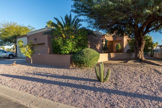 6215 E Nance Street, Mesa, AZ 85215 (MLS #5872225) :: Team Wilson Real Estate