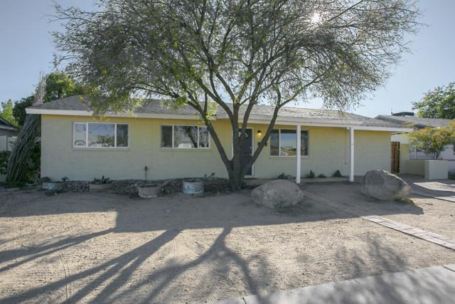 3037 W Dahlia Drive, Phoenix, AZ 85029 (MLS #5872227) :: Yost Realty Group at RE/MAX Casa Grande