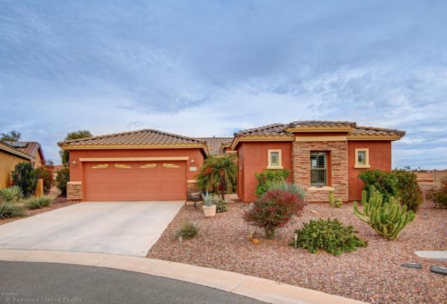 21167 N Get Around Drive, Maricopa, AZ 85138 (MLS #5872237) :: Team Wilson Real Estate