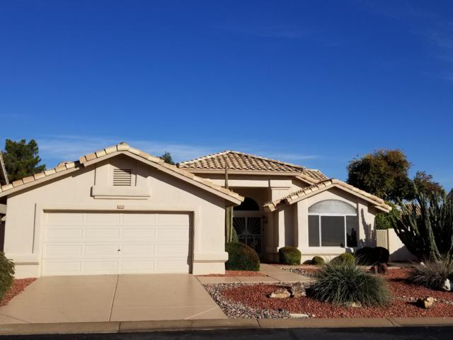 17606 N Rainbow Circle, Surprise, AZ 85374 (MLS #5872261) :: Yost Realty Group at RE/MAX Casa Grande