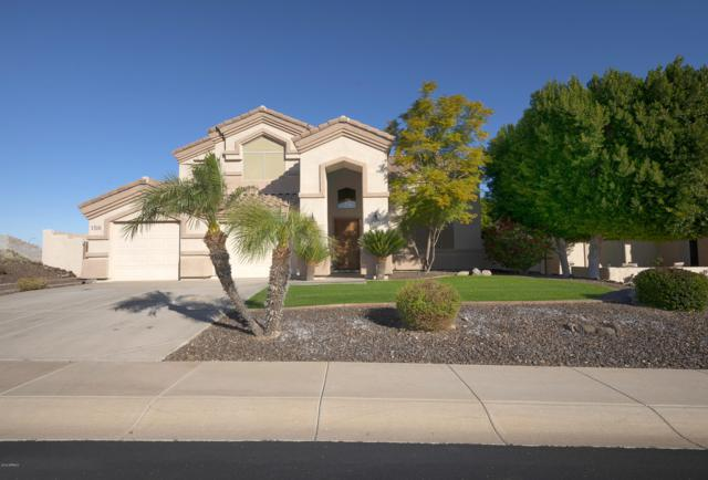 1516 E Villa Theresa Drive, Phoenix, AZ 85022 (MLS #5872266) :: Group 46:10