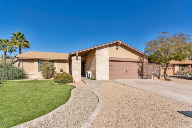 9046 E Sheena Drive, Scottsdale, AZ 85260 (MLS #5872317) :: The W Group
