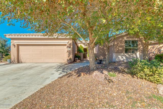 42792 W Kingfisher Drive, Maricopa, AZ 85138 (MLS #5872351) :: Yost Realty Group at RE/MAX Casa Grande