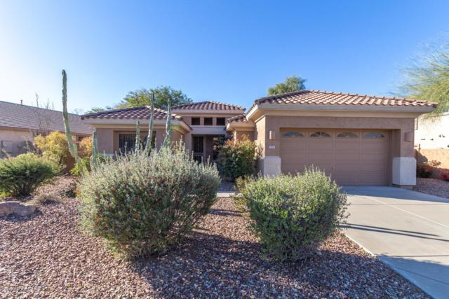 7453 E Nora Street, Mesa, AZ 85207 (MLS #5872386) :: The Property Partners at eXp Realty