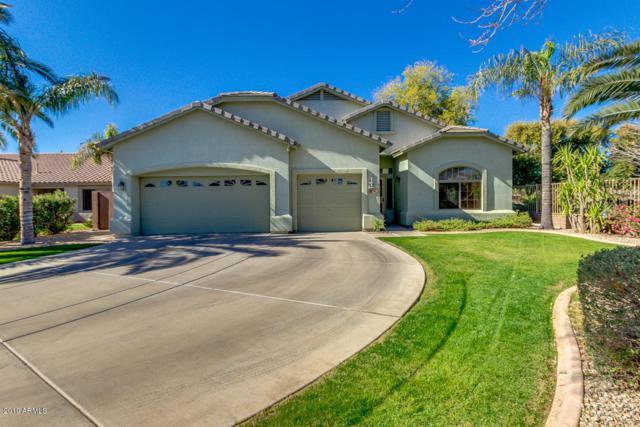 3002 S Abbey Circle, Mesa, AZ 85212 (MLS #5872397) :: The W Group