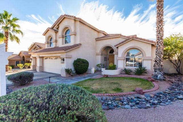 3219 E Desert Flower Lane, Phoenix, AZ 85044 (MLS #5872422) :: Yost Realty Group at RE/MAX Casa Grande