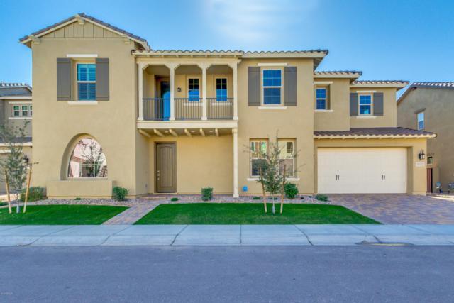 909 W Glacier Drive, Chandler, AZ 85248 (MLS #5872502) :: The Daniel Montez Real Estate Group