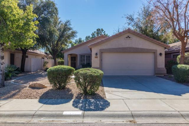 7467 W Lone Cactus Drive, Glendale, AZ 85308 (MLS #5872504) :: The Everest Team at My Home Group