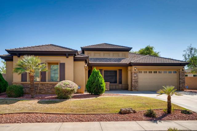 8553 W Laura Lane, Glendale, AZ 85305 (MLS #5872542) :: CC & Co. Real Estate Team