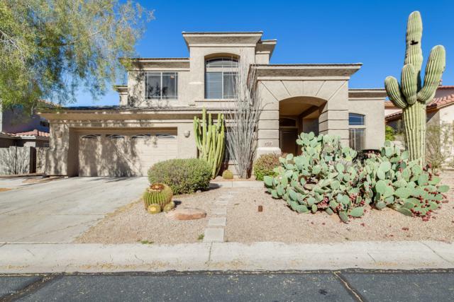 4928 E Cordia Way, Cave Creek, AZ 85331 (MLS #5872599) :: Yost Realty Group at RE/MAX Casa Grande