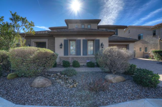 141 W Coconino Place, Chandler, AZ 85248 (MLS #5872617) :: Relevate   Phoenix