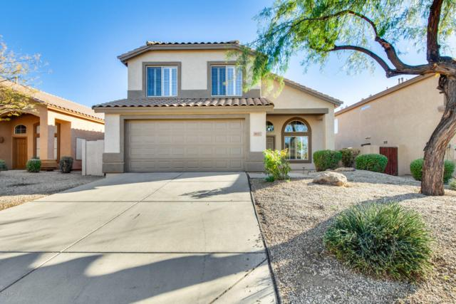 4611 E Laredo Lane, Cave Creek, AZ 85331 (MLS #5872621) :: Yost Realty Group at RE/MAX Casa Grande