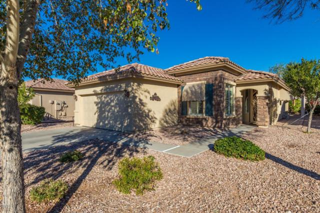 23014 W Micah Way, Buckeye, AZ 85326 (MLS #5872644) :: Devor Real Estate Associates