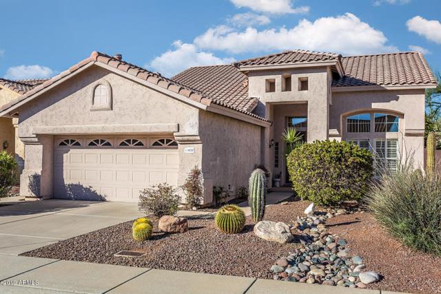 4232 E Desert Marigold Drive, Cave Creek, AZ 85331 (MLS #5872680) :: The Property Partners at eXp Realty